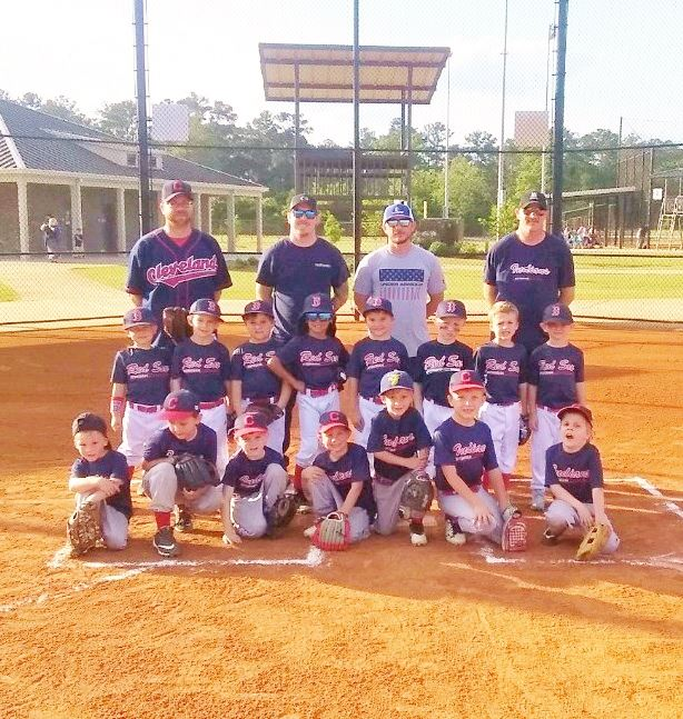Youth Baseball   Effingham County, GA